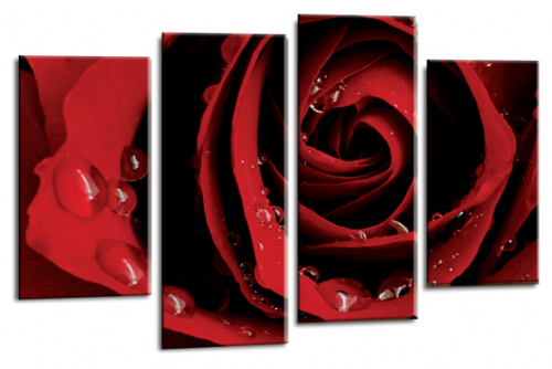 Flower Rose Wall Art Floral Picture Print Grey Red White